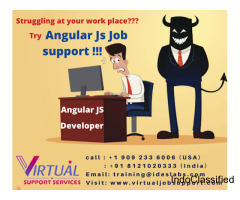AngularJS Job Support | AngularJS Online Job Support - VJS