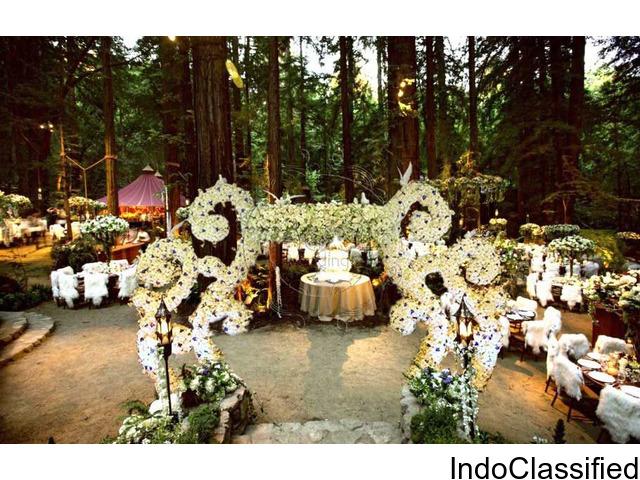 Kerala Wedding planner - Fonix Events