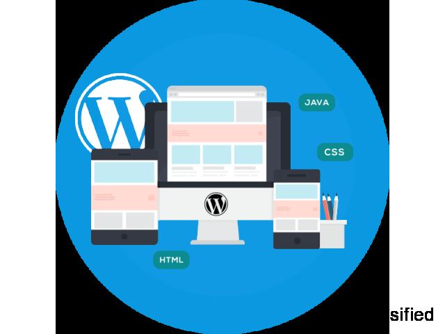 Website Development Company in delhi | Vibrant Web Tech