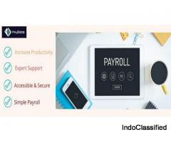 Hr and Payroll Management Software   Low Cost Payroll Software