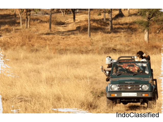 Book Satpura National Park Safari in Madhya Pradesh by Forsyth Lodge