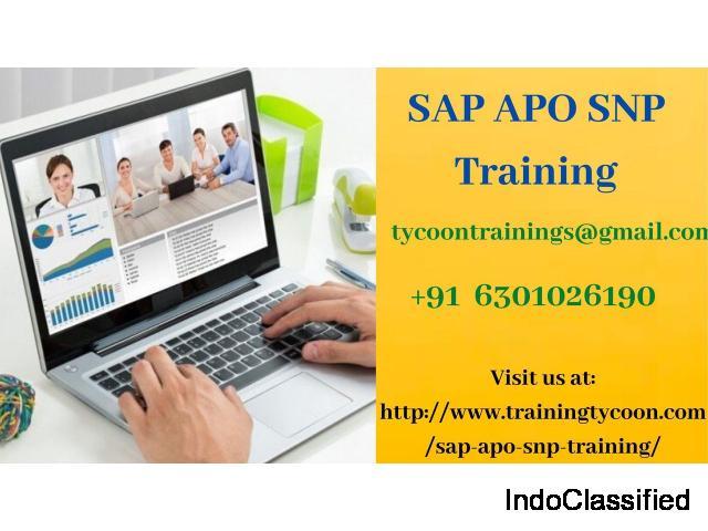SAP APO SNP Training | SAP APO SNP Online Training - Training Tycoon