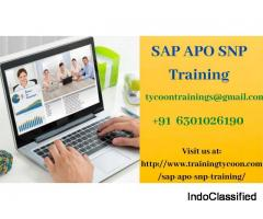 SAP APO SNP Training | SAP APO SNP Online Training - Training Tycoon