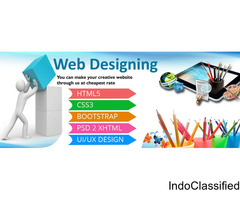 Hire Web Designers From The Best Web Design Company in USA