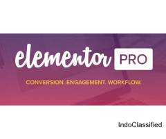 Elementor Pro Free Download For WordPress
