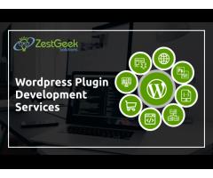 Best Wordpress Development Company In Mohali