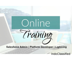 online salesforce training in noida