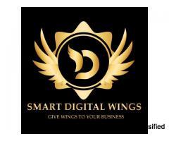 Website Designing in Meerut