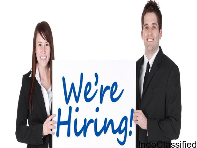 JOB in TECHNICAL SALES Experience- freshers , experienced apply