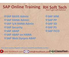 RH SOFT TECH Online Training Institute