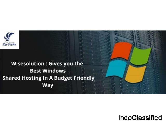 Wisesolution : Gives you the Best Windows Shared Hosting In A Budget Friendly Way