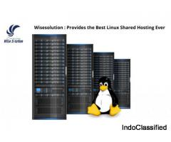 Wisesolution : Provides the Best Linux Shared Hosting Ever