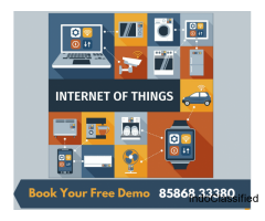 Online IOT summer training