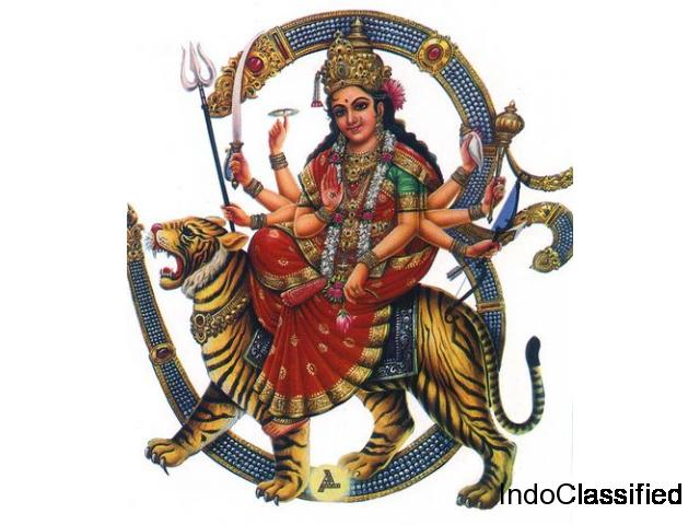 Best Astrologer in Majestic   Famous Astrologer in Majestic