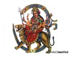 Best Astrologer in Majestic | Famous Astrologer in Majestic