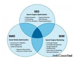 Web marketing expert Jaipur India,Search engine marketing expert Jaipur India