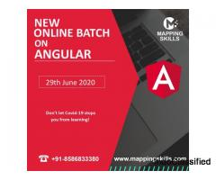 Online AngularJS  Training