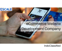Boost Your Sales with the Best eCommerce Web Designing Company in Delhi