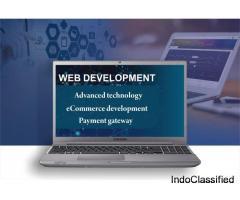 IT Company in Jaipur | Website Development | Logo Design | SEO | SMO | Internet Marketing