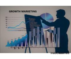Growth Marketing Agency in Chandigarh