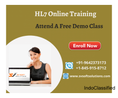 Best HL7 Online Training from SV Soft Solutions
