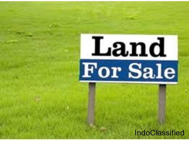 Land for sale in Vizianagaram near Ramabhadrapuram