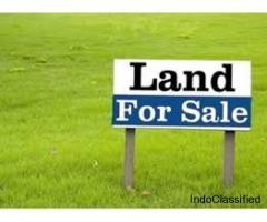 Land for sale in Vizianagaram near Ramabhadrapuram