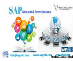 SAP SD Course in Chennai