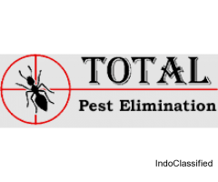 Effective services that wipe out pests permanently