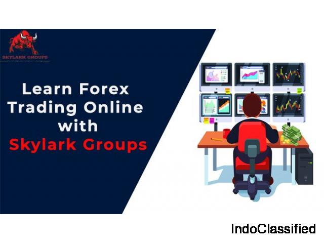 Learn Forex Trading Online with Skylark Groups