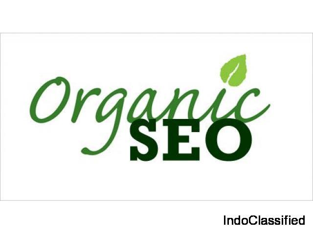 SEO Organic Impressum
