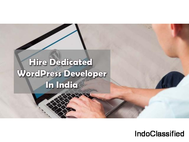 Hire Dedicated wordpress Developer India