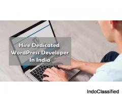 Hire Dedicated wordpress Developer India