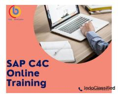 SAP C4C Functional Training in India USA UK