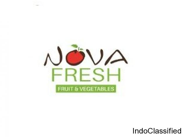 Nova fresh