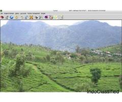 Tea Garden Management system by  EBS Software Solution.