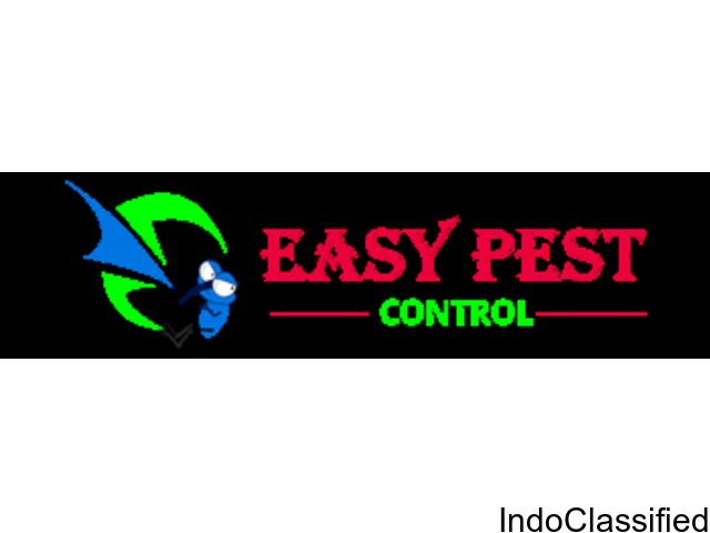 Termite and Cockroach Control in Chennai | Pest Control Chennai