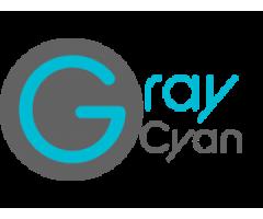 seo consultant toronto - Web Development - Graycyan