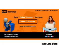 Learn Winrunner Training From the Industry Experts