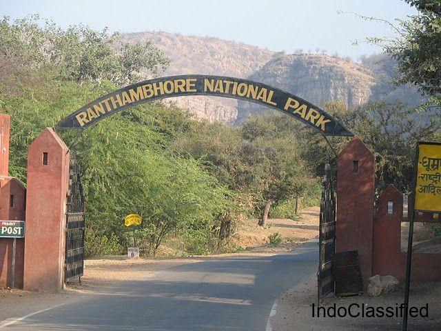 Ranthambore safari online booking price   How to book ranthambore safari ticket online