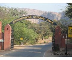 Ranthambore safari online booking price | How to book ranthambore safari ticket online