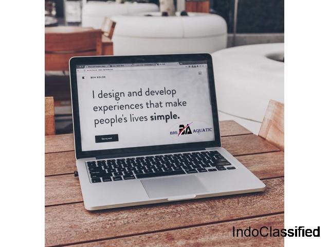 Website Development Company in India - Big Aquatic