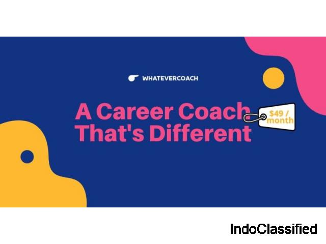 The Affordable Career Coach - $49 per Month