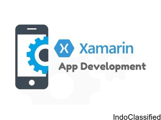 Xamarin development for android in Delhi
