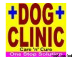 Dog Clinic In Jagatpura