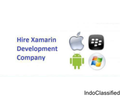 Hire Xamarin Development Company