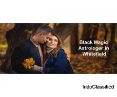 Best Astrologer in Whitefield | Famous & Genuine Astrologer in Whitefield