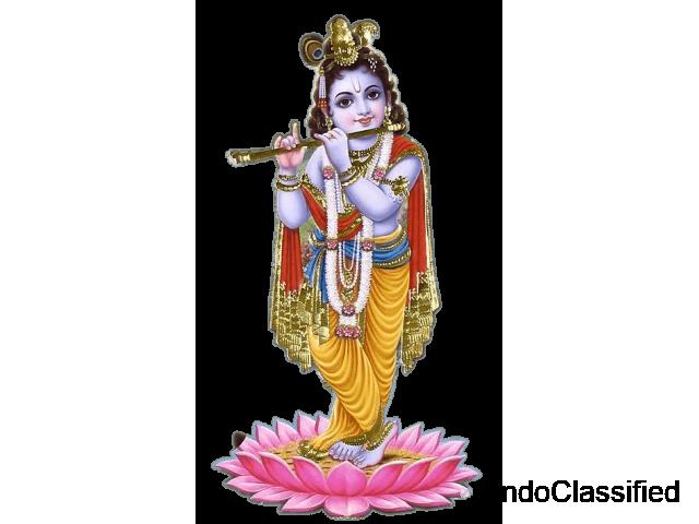 Astrologer Near Me | Best Astrologer Near Me | Sri Krishna Astrologer