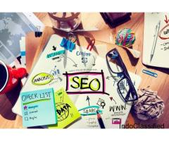 SEO Services By Experienced Consultant