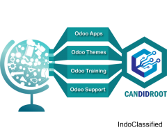 Expert Odoo Implementation at Budget Friendly Rate | Candidroot